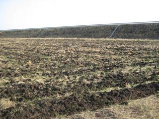 Земля в Болгарии продажа возле деревни Крыстина