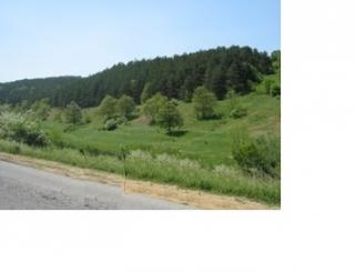 Купить землю в Болгарии недорого недалеко от города