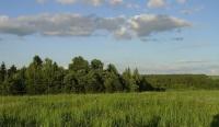 Купить участок пмж. Купить земельный участок 8 сот., Ольгово, Дмитровское шоссе 45 от МКАД.