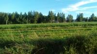 Предоставление земельных участков. Купить земельный участок 12 сот., Свистуха, Рогачевское шоссе 25 от МКАД.