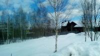 Купить земельный участок 16 сот., Мышецкое, Ленинградское шоссе 16 от МКАД.