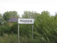 Земля для ИЖС. Купить земельный участок 5 сот., Мышецкое, Ленинградское шоссе 25 от МКАД.