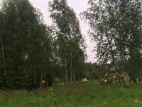 Продается земельный участок, Чепелево, 18 сот - ID 10002573