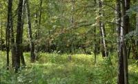 Продается земельный участок, Чехов, 11 сот - ID 10001724