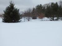 Продается земельный участок, Сохинки, 18 сот - ID 10001738