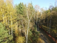 Лесной участок 15 соток д. Копнино ИЖС