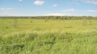 Земельный участок 14 гектар Деревня Шимохтино, Александровский район, Владимирская область