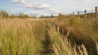 Земельный участок 5,67 Га рядом с деревней Сорокино, Александровский район, Владимирская область