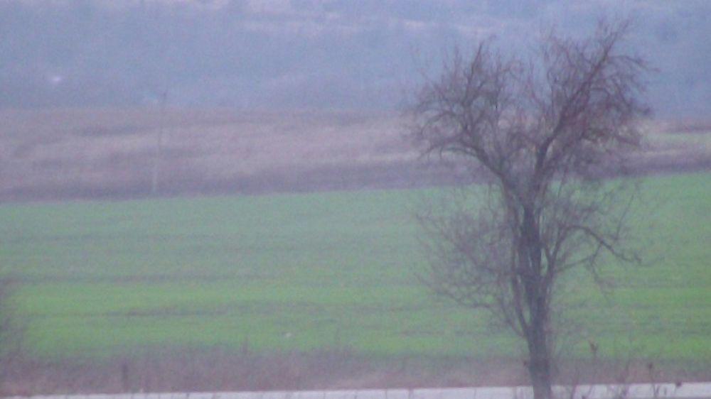 Купить Сельхозназначения (СНТ, ДНП), Краснодарский край, Ильский, Земельные участки c фото
