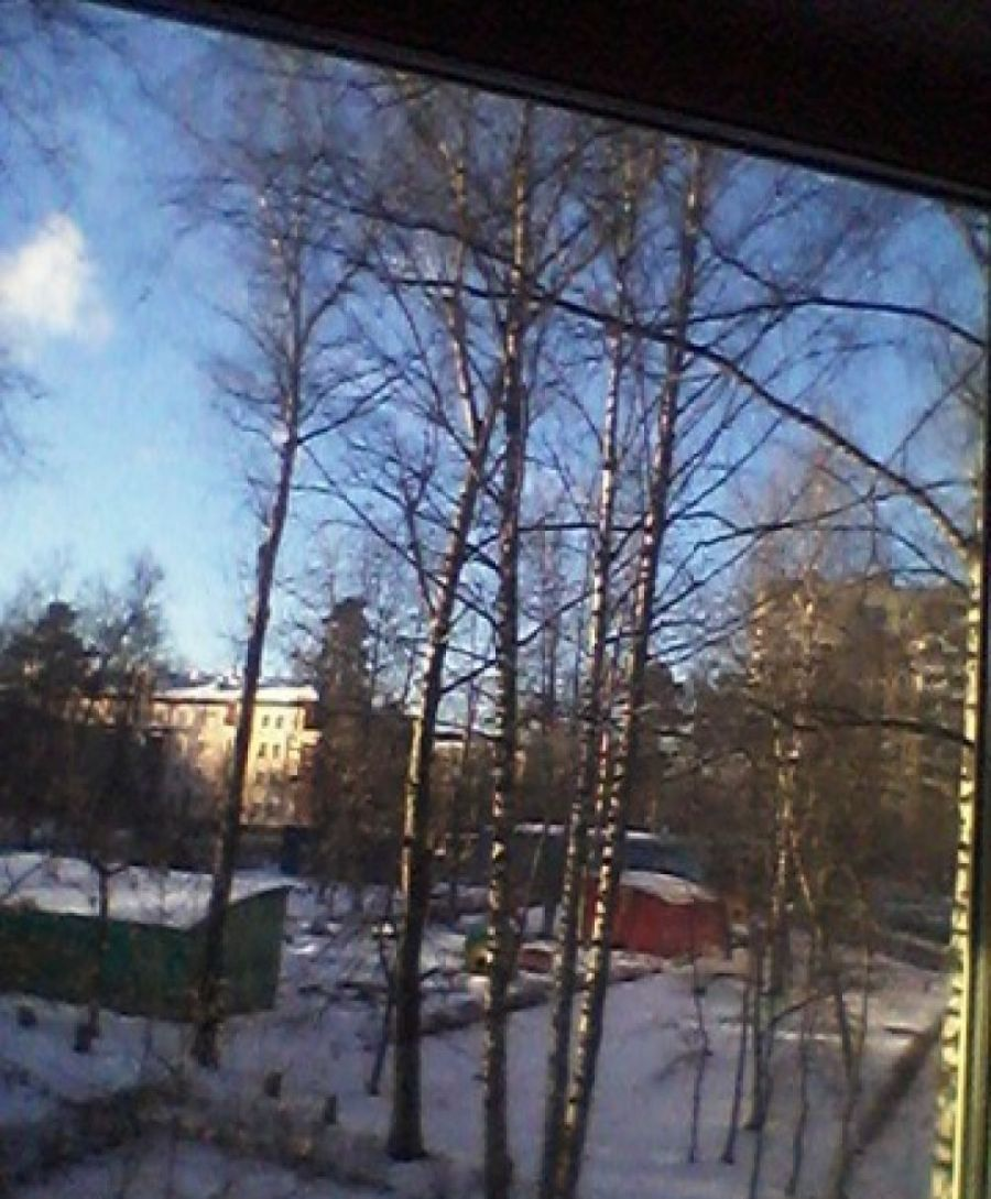 Продается однокомнатная квартира: г.Щелково ул.Институтская д.33, фото 5