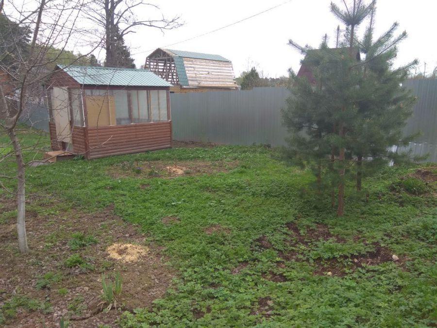 Земельный участок  6 соток  г.Лосино-Петровский СНТ Урожай, фото 10