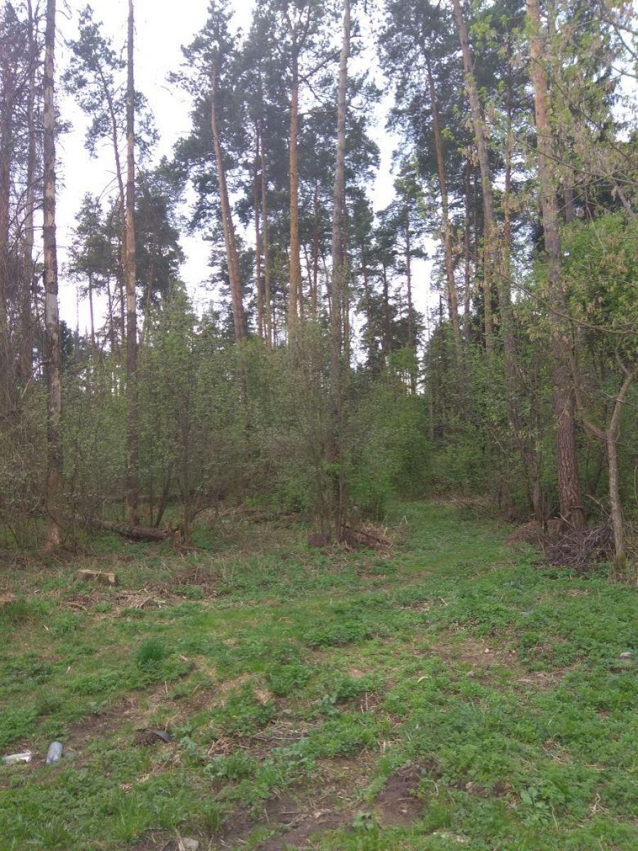 Земельный участок  6 соток  г.Лосино-Петровский СНТ Урожай, фото 8
