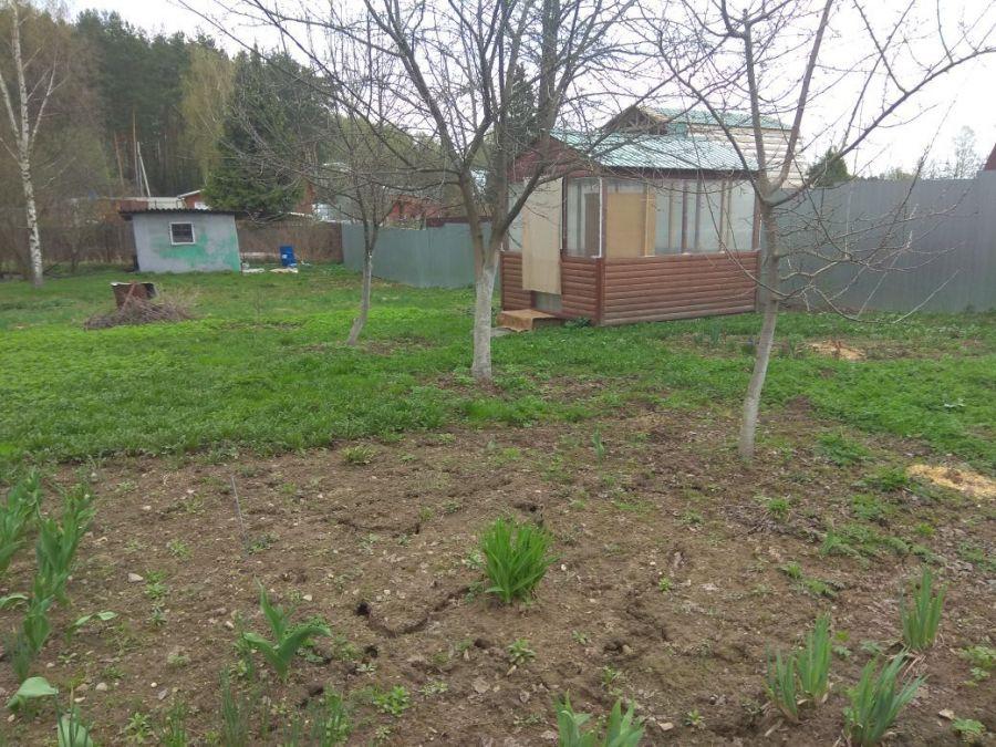 Земельный участок  6 соток  г.Лосино-Петровский СНТ Урожай, фото 12