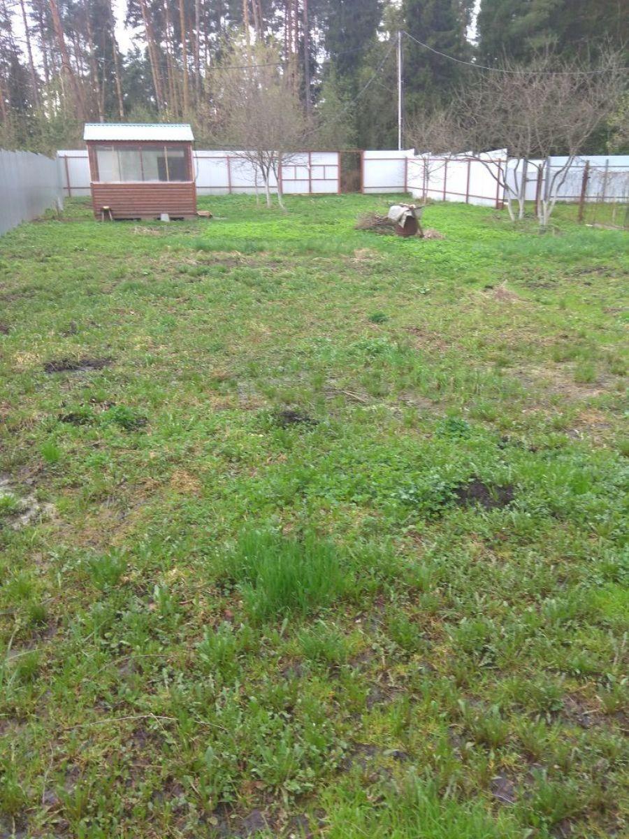 Земельный участок  6 соток  г.Лосино-Петровский СНТ Урожай, фото 16