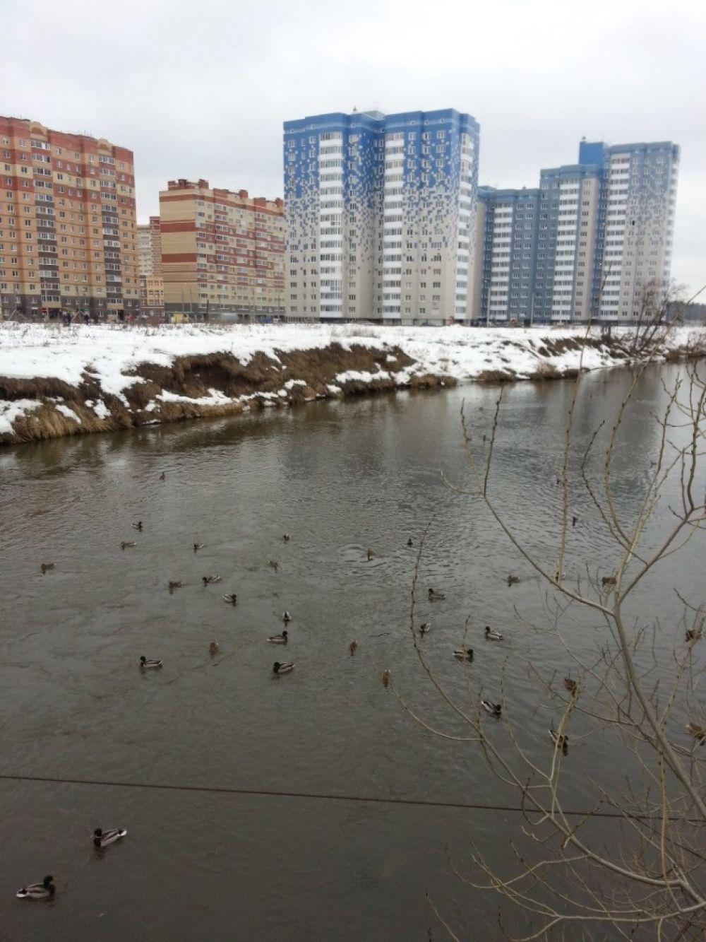 2-комнатная  квартира п.Свердловский ЖК Лукино-Варино ул.Заречная д.8, фото 9