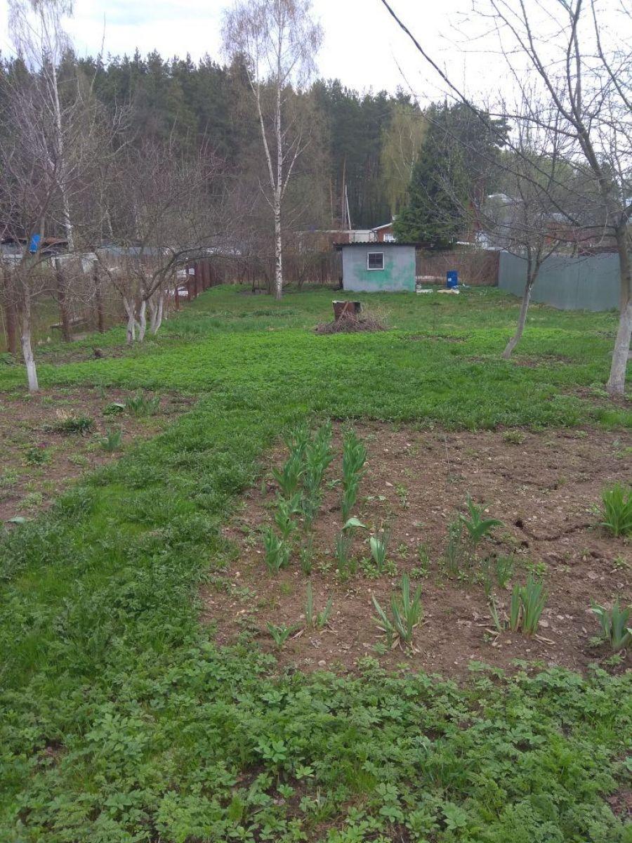 Земельный участок  6 соток  г.Лосино-Петровский СНТ Урожай, фото 11