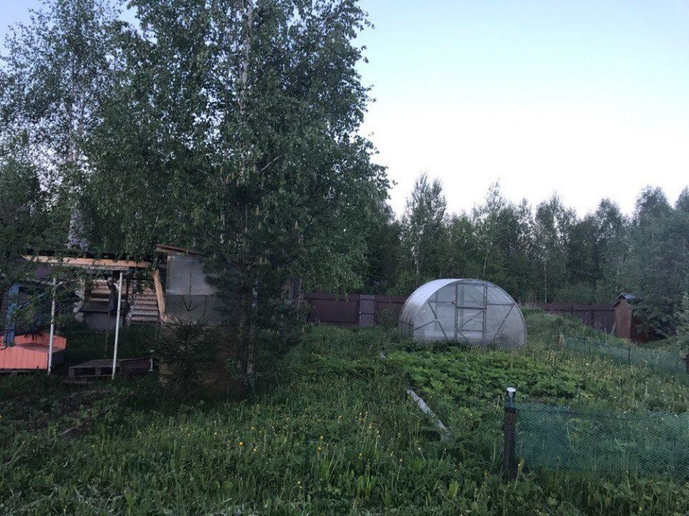Земельный участок 15 соток с. Трубино ул.Новостройка, фото 4