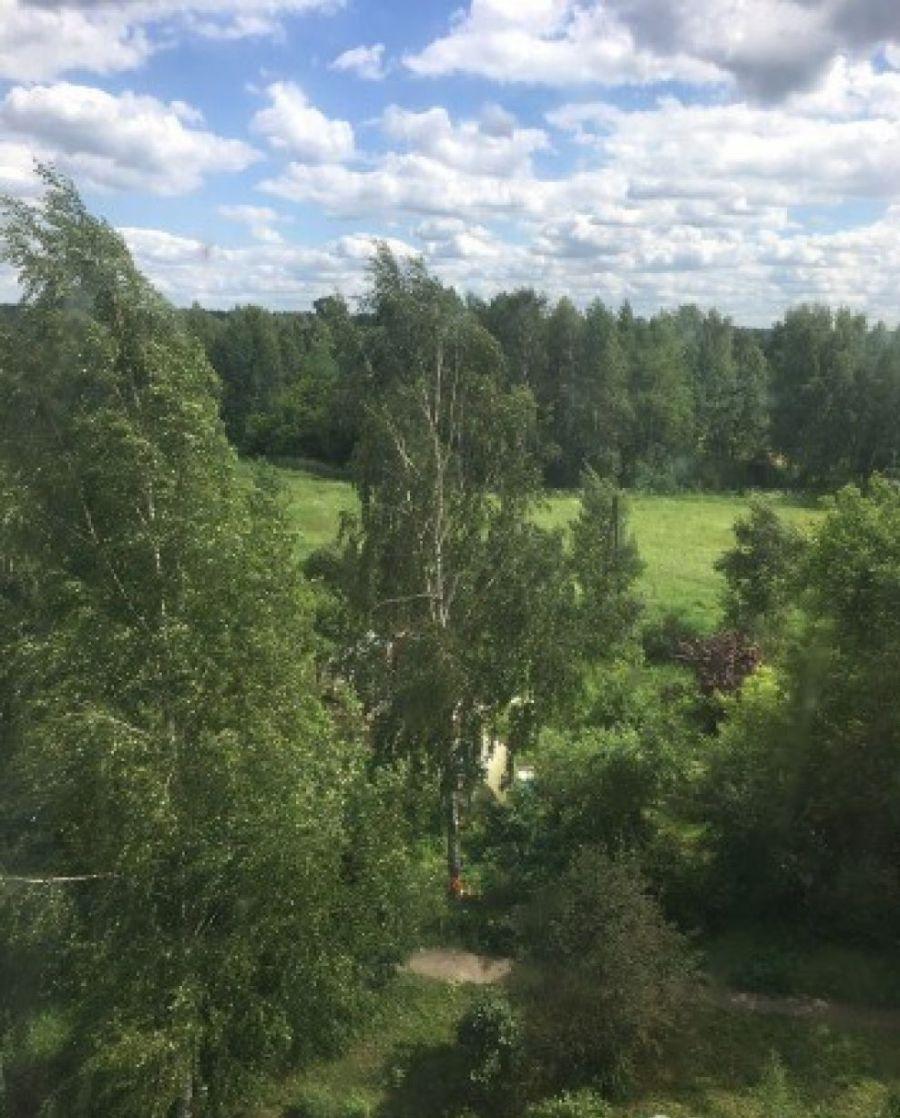 Продажа однокомнатной квартиры Московская область г. Лосино-Петровский ул. Санаторская дом 8, фото 8