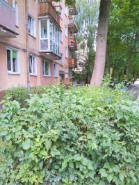 Купить двухкомнатную квартиру в Калининграде (вторичное жилье)