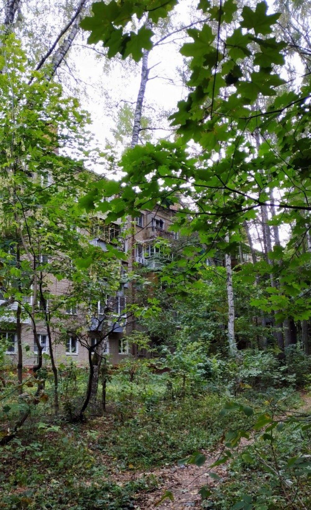 1-к квартира, г. Королев, ул. Толстого, д.4а, фото 15