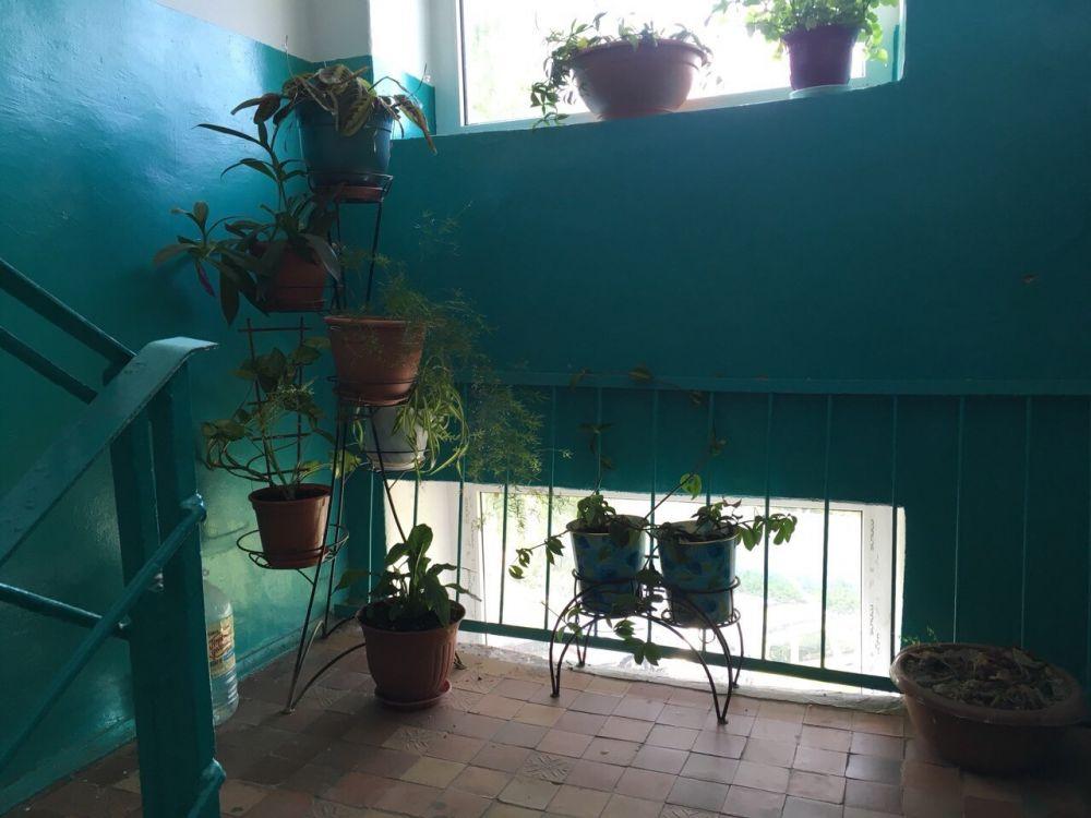 3-к квартира, Щёлково, Плеханова дом 10, фото 13