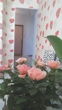 1-к квартира, Щёлково, Богородский, 2