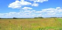 Продается участок 16 соток, 100 км от МКАД, д.Андреевское, Минское.ш