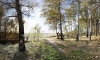 Участок от 20 – 40 соток в лесу д. Репниково, Чеховский район.