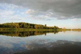 1,5 гектара земли на берегу Нерли, рядом с Волгой