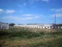 Продажа базы сельхоз. назначения| д.Михайловка, Марьяновский район