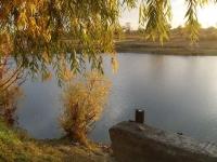 Продаются 2 земельных участка в живописном месте на берегу озера, рядом р.Иртыш.